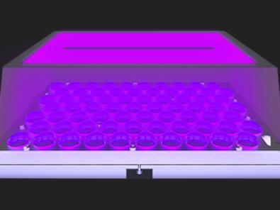 چیدمان جدید منبع نور UV و LCD مونوکروم با رزولوشن 4K